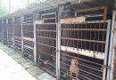 На 15 март отварят кучешкия приют в Дупница