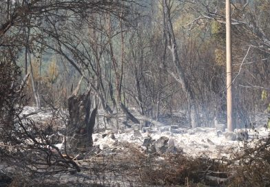 (Видео)Община Кюстендил открива дарителска сметка за обезщетяване на пострадалите от пожара в с. Долно село